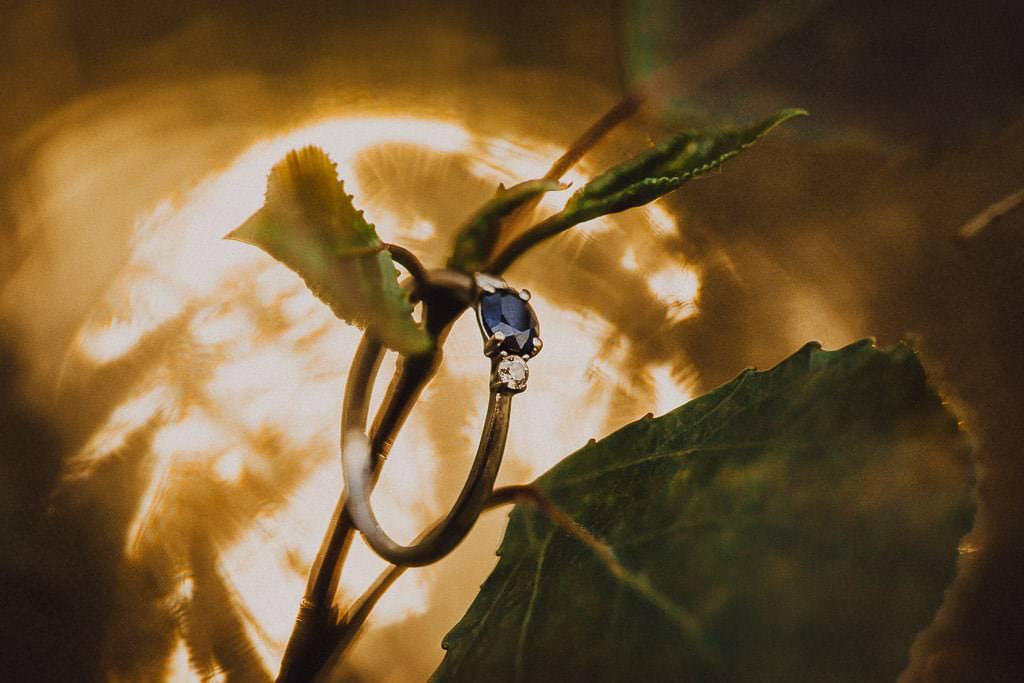 zdjęcie makro obrączki