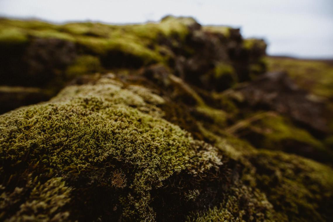 Podróż: Kolory Islandii 87