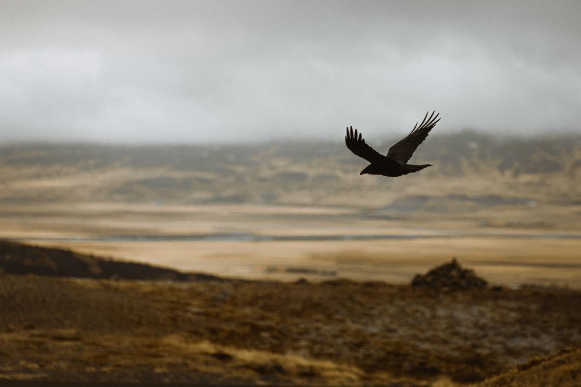 Podróż: Kolory Islandii 7